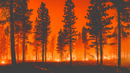 3 big wildfire questions, answered