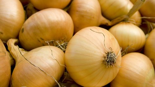 You've Been Storing Onions Wrong Your Entire Life