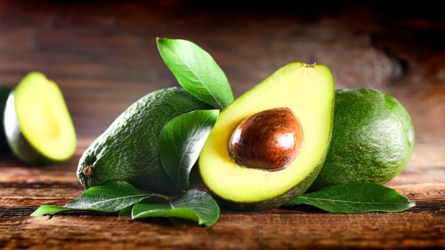 You Should Never Feed Birds Avocado. Here's Why