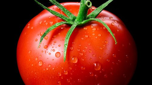 What People On The Keto Diet Should Know About Tomatoes