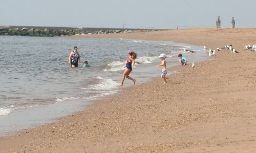 Mystery of 'strong odor' at Massachusetts beach was solved by high school students
