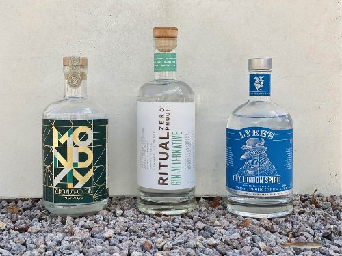 The Lineup: Best Non Alcoholic Gin with Recipes Tested
