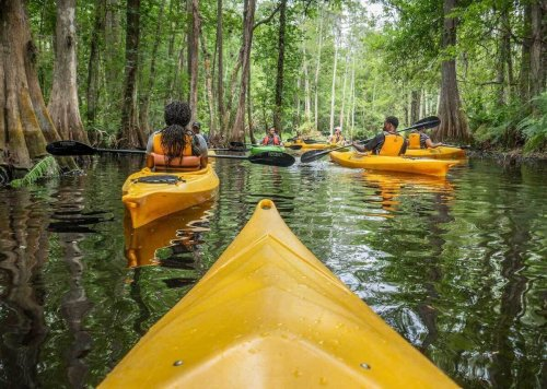 How to get outdoors on the lakes, rivers, and shores of Central Florida