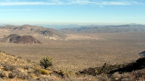 Discovery of body ends search for missing 38-year-old at Joshua Tree, rangers say