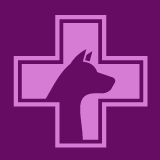 Perioperative Outcome in Dogs Undergoing Emergency Abdominal Surgery: A Retrospective Study on 82 Cases (2018–2020)