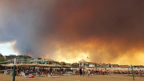 Riesige Waldbrände in USA, Italien, Türkei und Finnland | MDR.DE