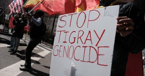 Irob and Kunuma communities: Petition launched against Tigray genocide amid extreme danger of being wiped out