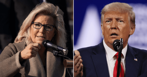 Liz Cheney says Trump 'risks inciting further violence' and slams GOP, Internet says 'shame she's alone'