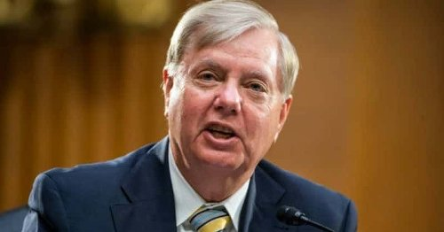 Lindsey Graham says he will shoot gangs with AR-15 during natural disaster, Internet mocks 'survivalist fanfic'