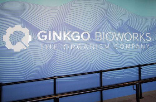 Synbio firm Ginkgo Bioworks engineers a SPAC deal to go public at a $15B valuation - MedCity News