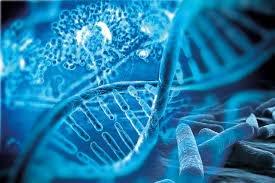 Molecular Diagnostics Market Report, Size, Trends, Global Industry Overview, CAGR of 8.57%, Top Companies Revenue, Merger, Regional Outlook by 2027 | Medgadget - Flipboard