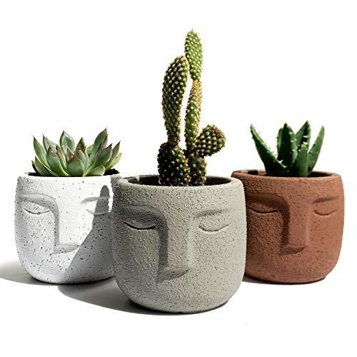 Desk planters