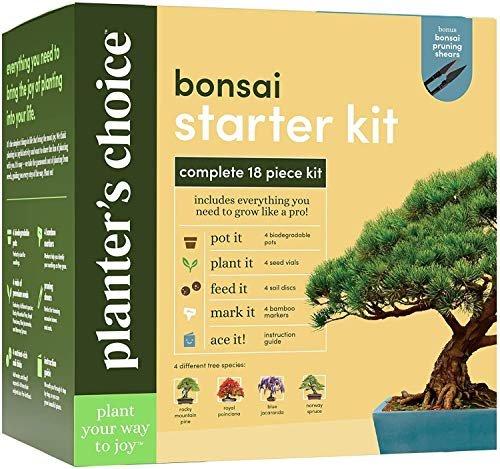 Bonsai starter kit