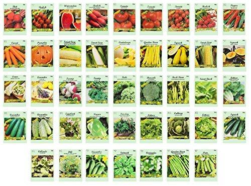 Set of 43 Assorted Vegetable & Herb Seeds