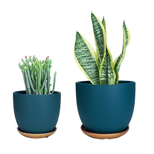 Cool blue planter pots