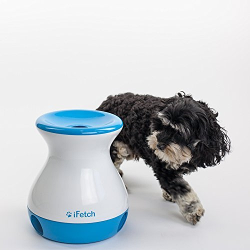 iFetch pet toy for mental stimulation