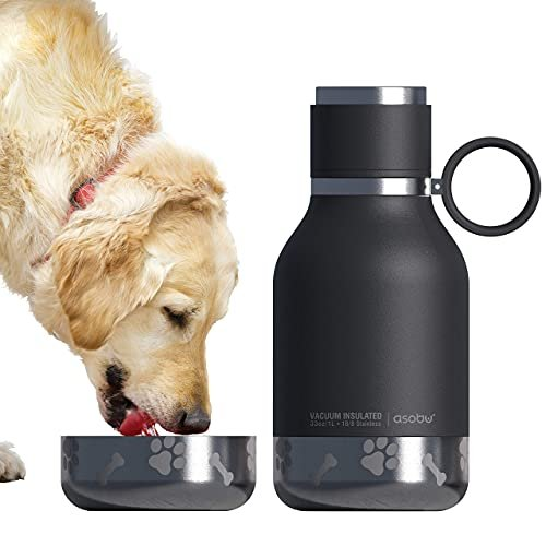Dog bowl attached to an insulated bottle