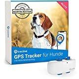 Kaufratgeber: Die besten GPS-Tracker für Hunde – für entspannte Spaziergänge