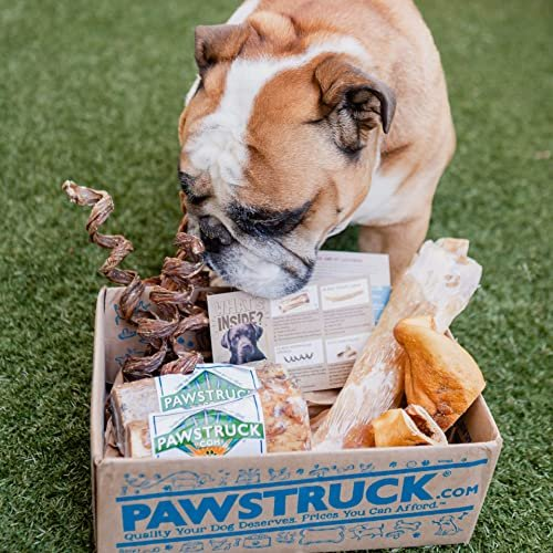 Nearly $11 off a Pawstruck natural dog chew box