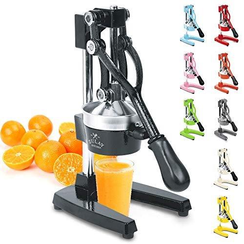 Save $23 on a professional citrus juicer