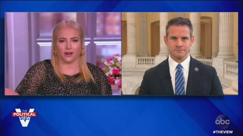 GOP Rep. Adam Kinzinger NUKES His Own Party on 'The View' for Capitol Riot Denialism, Conspiracies: Like Something Out of 'North Korea'