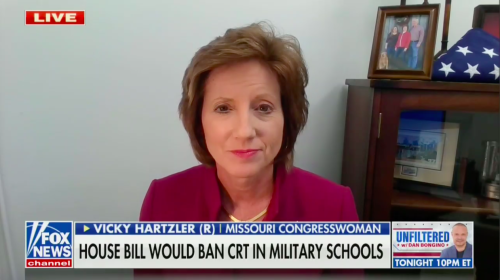 Missouri Congresswoman Condemns Critical Race Theory: 'We Should Be Teaching the ABC's, Not the CRT'