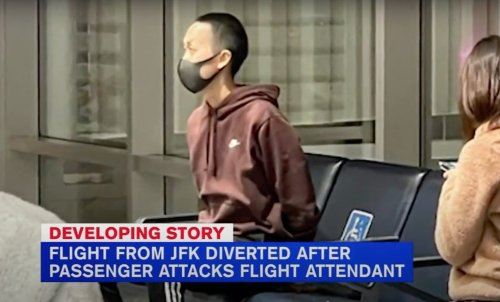 American Airlines Flight Diverted to Denver After Passenger Attacks Flight Attendant