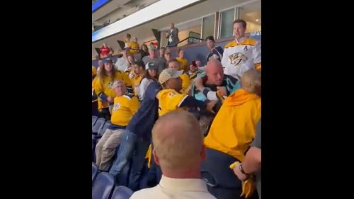 Seattle Kraken Fans Officially Initiated into the NHL After Violent Brawl with Nashville Predators Crowd