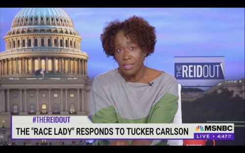 Joy Reid Drops Epic Response to 'Lil' Tucker Carlson' Calling Her 'The Race Lady': Are You Jealous I Went to Harvard?