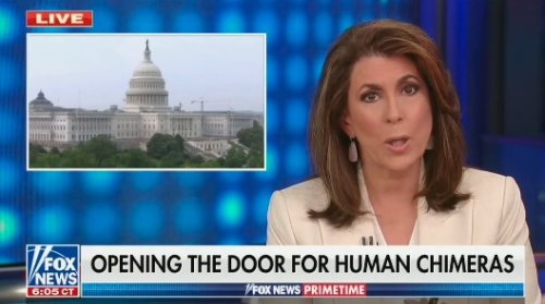 Fox Host Warns of Human-Animal Hybrids: 'Democrats Will Have Blood on Their Hands'