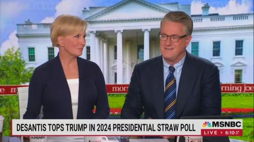 'A Conquering King': Scarborough Reveals His Friends Are Gushing Over DeSantis, Comparing Him to Reagan
