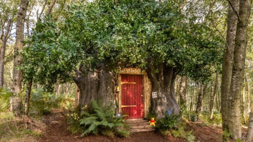 Things We Saw Today: Rent Winnie the Pooh's Tree House on BearBnB