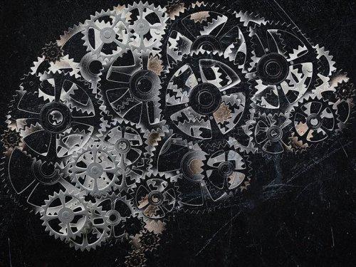 'Mind-reading' technology translates brain activity into written words