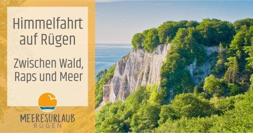 Himmelfahrt auf Rügen - Zwischen Wald, Raps und Meer