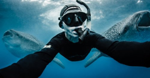This Photographer Risks His Life To Save Our Oceans