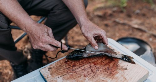 Learn How To Fillet a Fish in the Field | Men's Journal