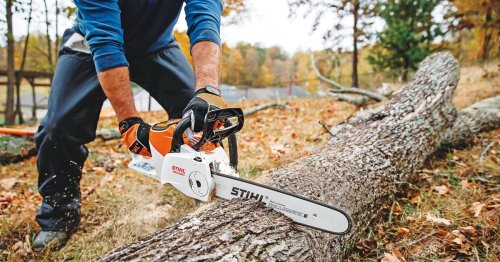 The Best Electric Lawn Mower, Chainsaw, and Yard Tools for Greener Pastures - Men's Journal