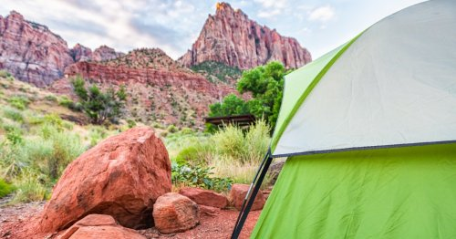 New Research Reveals What Makes the Perfect Campsite