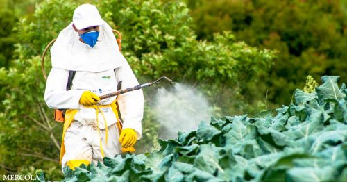 Should this Herbicide Be Cause for Alarm?