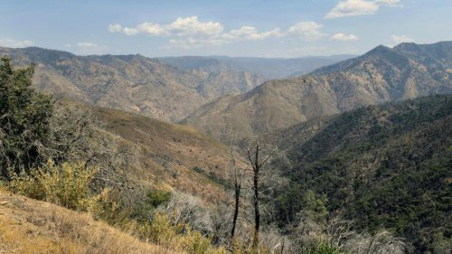 Northern California family's mysterious deaths on hiking trail blamed on hyperthermia