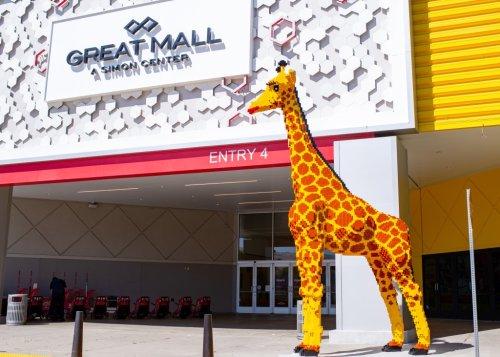 San Francisco Zoo giraffe helps pick name for towering Lego replica