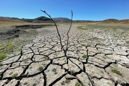 Drought: Marin, Saudi crown prince eyeing same desalination plants