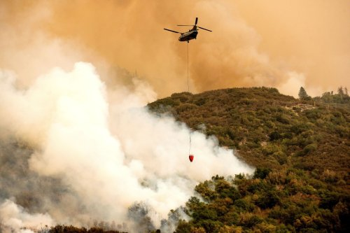 Sequoia National Park fire: Crews wrapping world's largest trees with fire-proof blankets