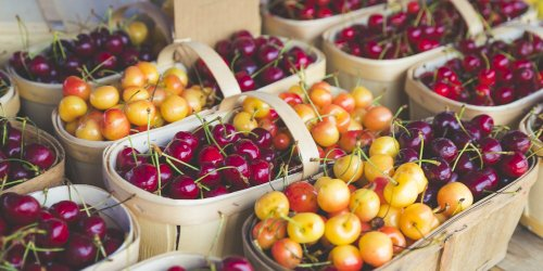 Summer Is The Season With a Fresh Cherry on Top-Here Are Our Favorite Types