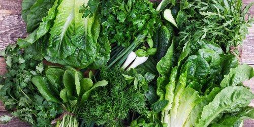 10 Salad Greens Better Than Iceberg Lettuce