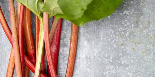It's Rhubarb Season! These Are Our Best Sweet and Savory Recipes for This Spring Treat
