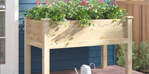 The 10 Best Raised Garden Beds for Planting Herbs, Flowers, Veggies, and More