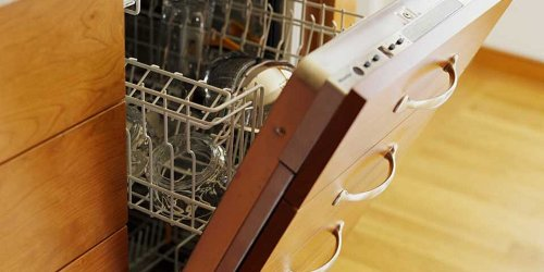 Do You Really Need to Clean Your Dishwasher?