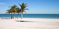 Discover florida beaches