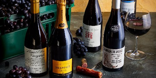 The 2021 Wine Lover's Guide